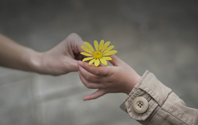 Person giving a single yellow flower to another person representing Sales Performance.